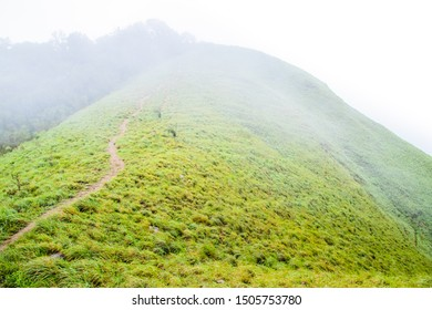 Viewpoint and green fields in the rainy season cover by fog at Doi Luang Tak, Tak Province,Thailand.
