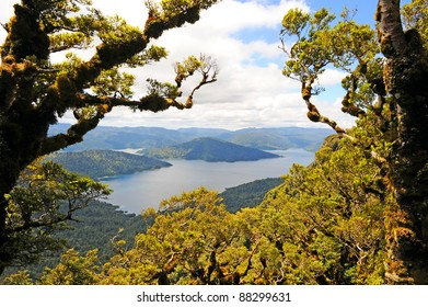 Lake Waikaremoana Images, Stock Photos & Vectors | Shutterstock