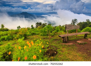 Viewpoint  on the mountain in the Phu Pa por, Loei province, Thailand.