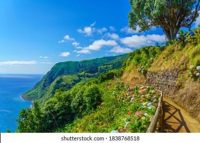 Viewpoint Ponta do Sossego, Sao Miguel Island, Azores, Portugal. View of flowers on a mountain and the ocean in Miradouro da Ponta do Sossego Nordeste, Sao Miguel, Azores, Portugal.