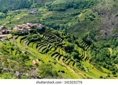 Viewpoint of the Terraces (Miradouro dos Socalcos), overlooking the Agricultural terraces (famous Tibete style landscape view), Porta Cova place, Sistelo, Arcos de Valdevez, Portugal.