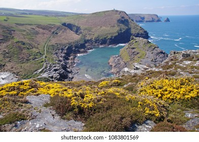 Viewpoint towards the rugged coastline in the northern part of Cornwall and the entrance to the picturesque natural harbour of Boscastle