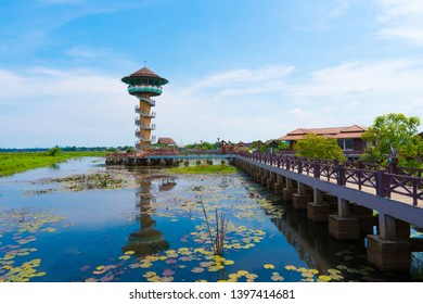 Viewpoint tower in wetland, Thale Noi Waterfowl Reserve at Phatthalung, Thailand.