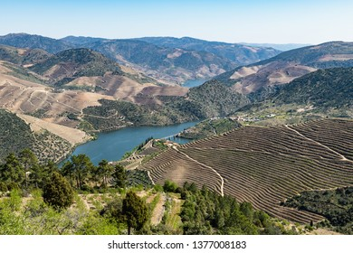 Viewpoint of Vargelas allows to see a vast landscape on the Douro and its man-made slopes. Douro Region, famous Port Wine Region, Portugal.