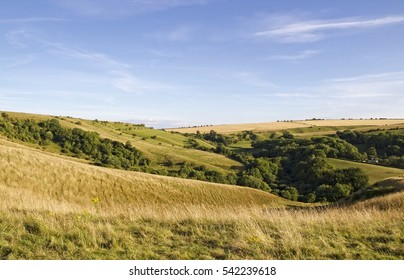 Views across parts of Salisbury Plain in Wiltshire with its valleys, trees and grass lands in Late July.