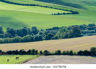 Views across the South Downs close to Lewes in East Sussex