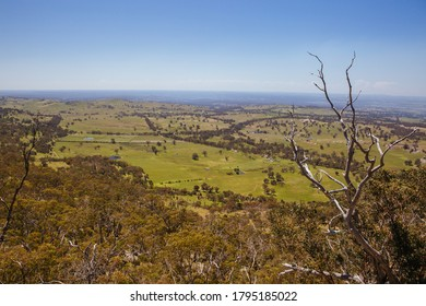 Views around Mt Alexander Regional Park and Dog Rocks near Harcourt on a clear sunny day in the Victorian goldfields, Australia