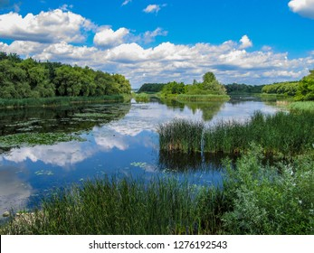 Views of Hungarian nature reserve Kis Balaton (Little Balaton)in the near from Lake Balaton with blue Sky ,green Vegetation and blue Water