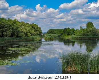 Views of Hungarian nature reserve Kis Balaton (Little Balaton)in the near from Lake Balaton with blue Sky ,green Vegetation and blue Water