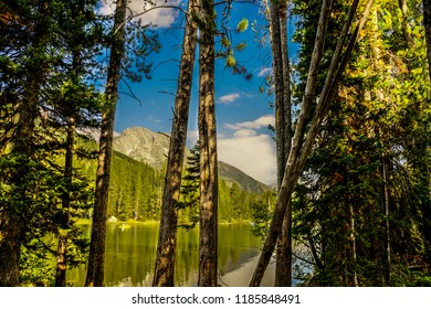 Views of Leigh Lake and the mountains while hiking the trail along the shoreline in Grand Teton National Park in Wyoming, are amazing. The tree silhouettes add to the composition.