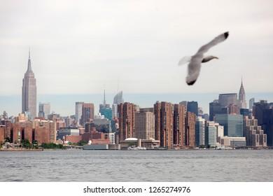 Views of Manhattan from Brooklyn