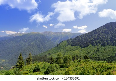 views of the mountains and forests