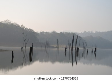 Views of Thekkady lake in Periyar Tiger Reserve, Kerala, India