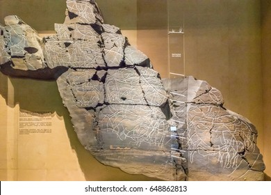 VILA NOVA DE FOZ COA, PORTUGAL - JUNE 9, 2016: Exhibitions of the Museum of Art and Archaeology in the Prehistoric Rock-Art Site of the Coa Valley. The site is one of UNESCO World Heritage Sites.
