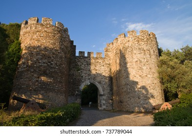 Vila Vicosa castle gateway, round lookout towers, canons and part of the outer walls under a blue bright sky and partially covered with trees. Alentejo, Portugal.