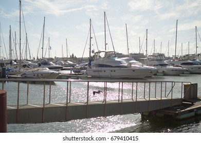 Vilamoura, Algarve Portugal - May 27, 2017: Beautiful moored sail yachts in the ocean port, water transport, summertime vacation and wealth concept on sunny blue sky outdoors background