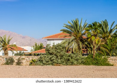 villa apartments in Israel with palm trees garden back yard