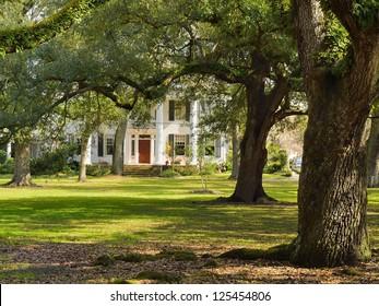Villa at Audubon Park in New Orleans