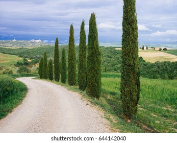 Villa in Tuscany with cypress road and blue sky, idyllic seasonal nature landscape vintage hipster background.
