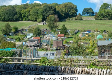 A village allotment on a hillside in the sun