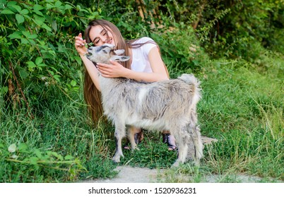 Village animals. Girl play cute goat. Feeding animal. Protect animals. Veterinarian occupation. Eco farm. Love and care. Animals law. Woman and small goat green grass. Farm and farming concept.