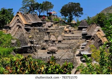 Village bajawa culture flores indonesia