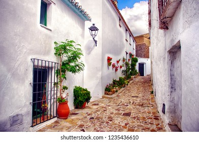 Village of Castellar de la Frontera, typical street with flowers in the white facades, in Cadiz.