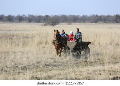 village family rides through the spring field in a horse cart on horseback,  Novotroitskoe village/Ukraine - 2015-03-22