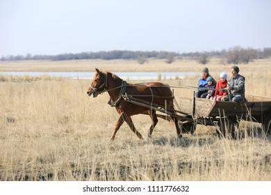village family rides through the spring field in a horse cart on horseback. Novotroitskoe Village/ Ukraine - 2015-03-22