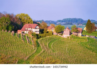 Village at Famous Slovenian and Austrian heart shape wine road among vineyards in Slovenia. Scenic landscape and nature near Maribor in Slovenija. Unique tourism on green hills.