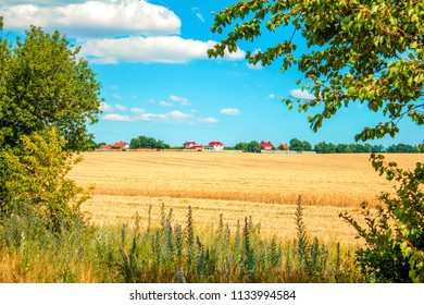 village in a field and a frame of trees
