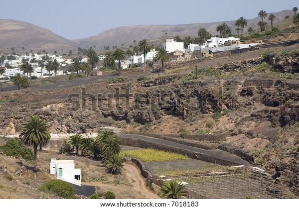 Village of Haria, Lanzarote, Canary Islands, Spain