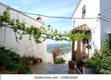 Village house with views towards the town, Casares, Malaga Province, Andalucia, Spain, Western Europe.
