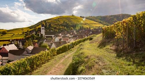 Village of Katzenthal in autumn, Haut Rhin, Alsace, France
