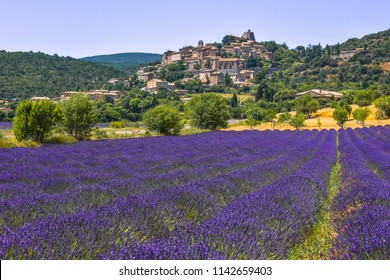 village on a hill with lavender field on its feet, village Simiane-la-Rotonde, Provence, France, department Alpes-de-Haute-Provence