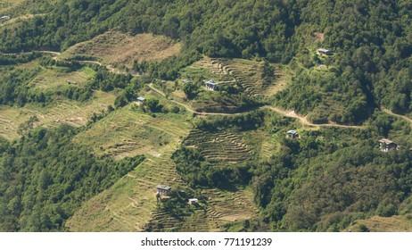 Village and rice field.. Kingdom of Bhutan. Asia