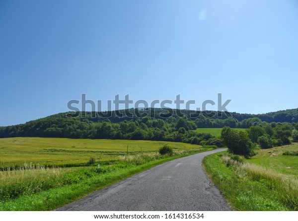 Village Road with tree and fog and curve