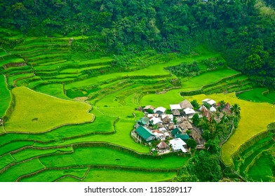 A village set within the historic rice terraces of Banaue Philippine May 19, 2013