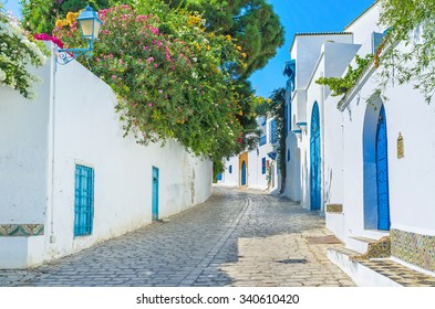 The village of Sidi Bou Said boasts the lush greenery in private gardens behind the high fences, Tunisia.