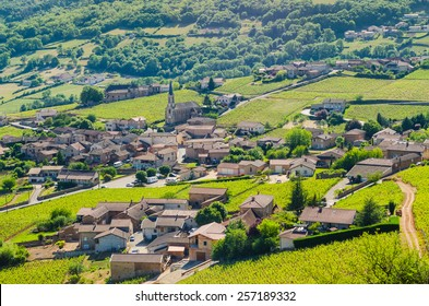 The village of Solutre and wine yard's, Burgundy, France, color