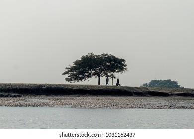 Village in Sundarbans in Bangladesh