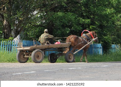 Village wheeled cart with brown horse and coachman rides through the village - rural landscape