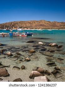 Villasimius, Italy - August 22, 2017: Fishing boats moored near Punta Molentis beach, Villasimius, Sardinia, Italy.