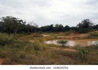 Vilpattu National Park,Sri Lanka