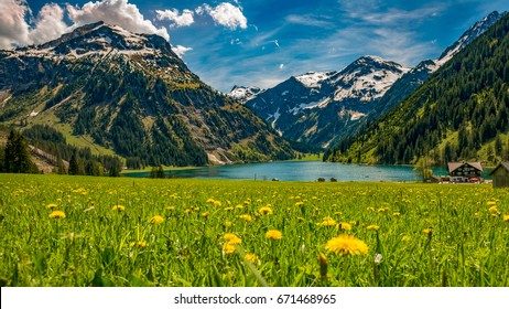 Vilsalpsee in spring with flower meadow and mountains in background Tannheimer Tal Austria