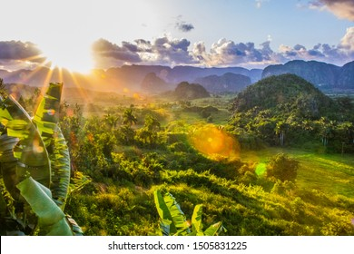 Vinales, Cuba - July 11 2018 : A view of the valley of Viales. Tropical and almost a rain forest. Located within a national park with the same name.
