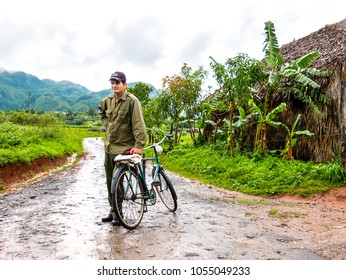 Vinales, Cuba. June 2016: Cuban man with bicycle, wearing a typical military green shirt and a hat, coming back from a tobacco plantations, in the middle of the fields at tropical region of Vinales.