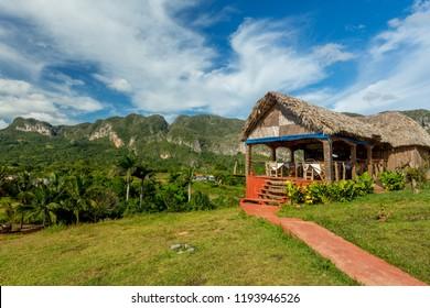Vinales, Cuba. Tobacco farming