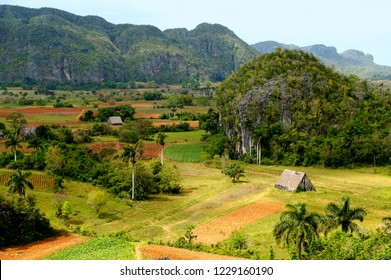 The Vinales Valley in Cuba is a living cultural landscape where traditional agriculture is practiced. It is an UNESCO World Heritage Site since 1999.