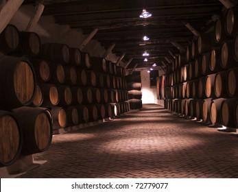 vine cellar with porto tawny wooden barrels